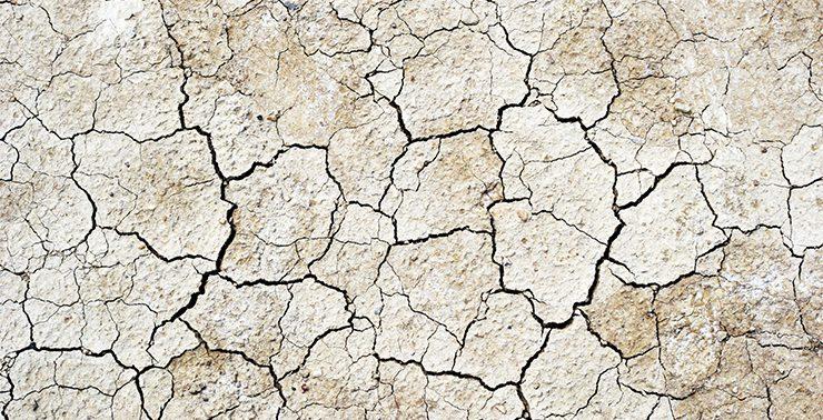 высушивание почвы