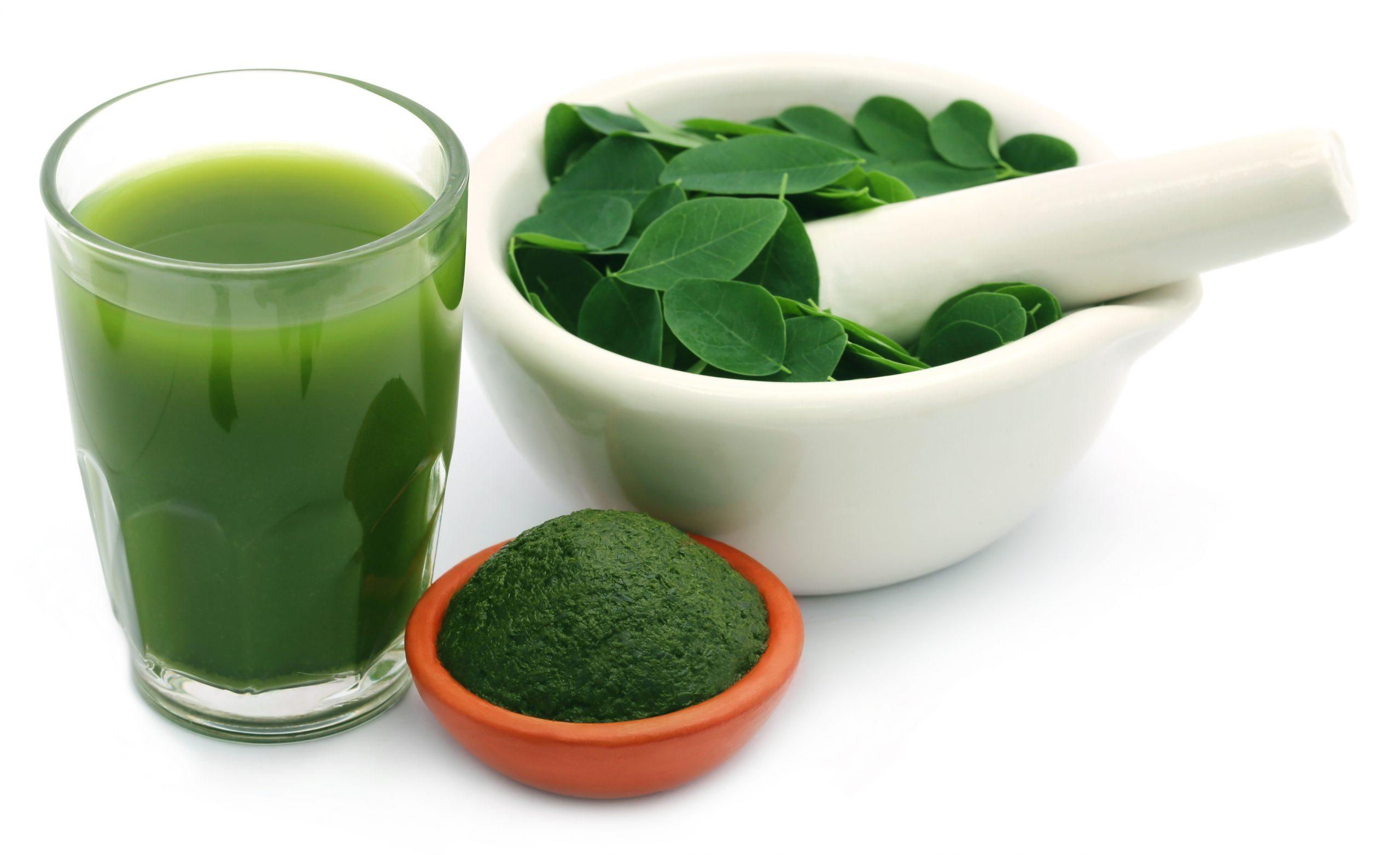 Гармала- лечебные свойства и противопоказания, польза и вред